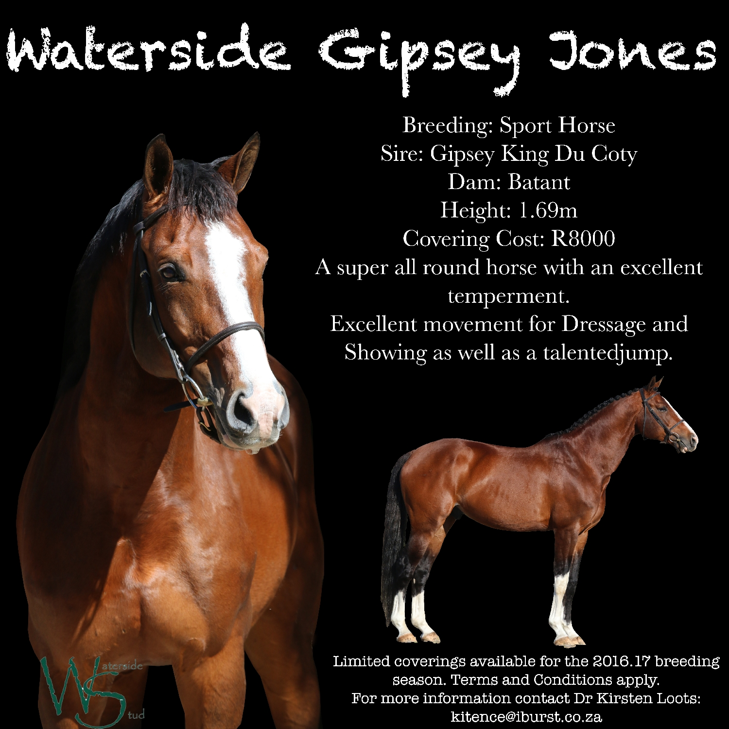 waterside-gipsey-jones