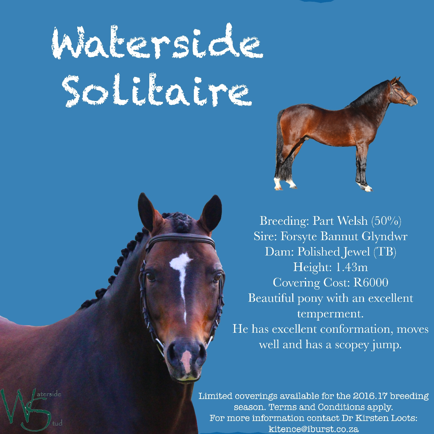 waterside-solitaire